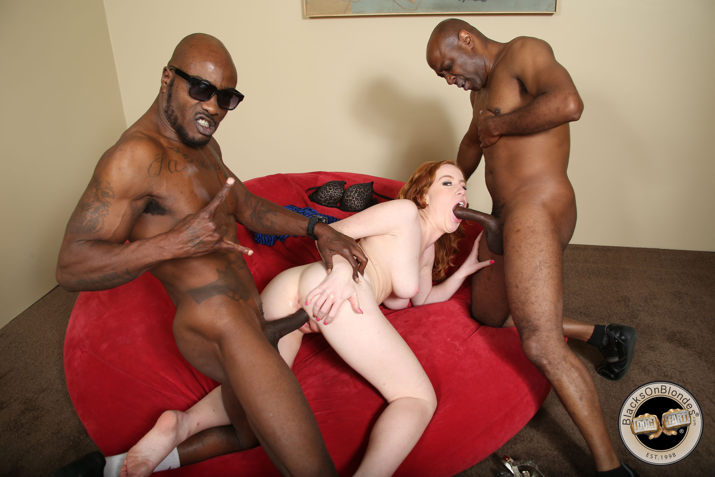 Kierra Wilde - Kierra Wilde - Blacks On Blondes | Picture (14)