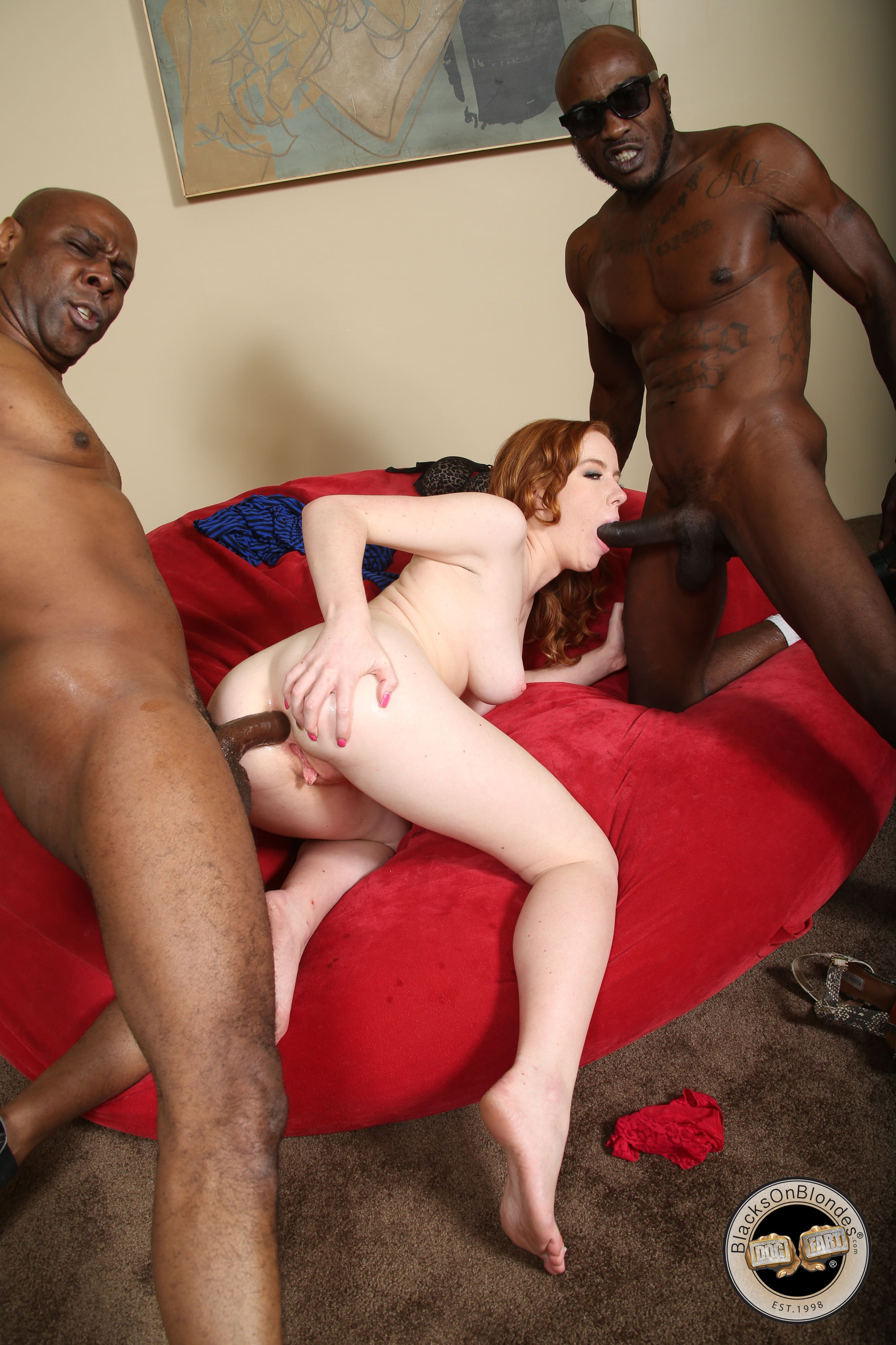 Kierra Wilde - Kierra Wilde - Blacks On Blondes | Picture (18)