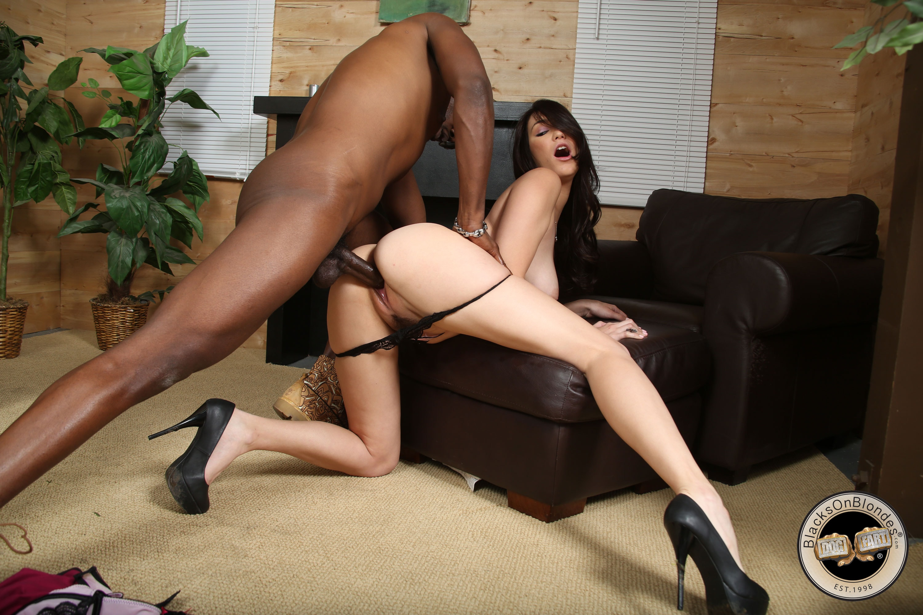 Holly black porno